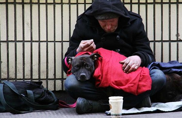 Homeless man sitting on sidewalk with pet dog
